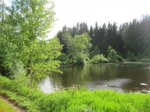 Усадьба Жедочи - возможности загородной жизни